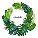 Gouache circle wreath with tropic leaves. Clipart for art work and weddind design. Gouache pattern with Monstera, elephant ear leaf, philodendron, cabbage palm stock illustration