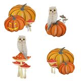 Gouache magic set with pumpkin, fly agaric and owl stock illustration