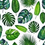 Gouache naadloos patroon met tropische bladeren Patroon 2 Hand-drawn clipart voor het kunstwerk en weddind ontwerp royalty-vrije illustratie