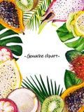 Gouache summer rectangular frame with mixed tropical leaves and fruits. Gouache rectangular frame with tropical leaves and fruits papaya, dragon fruit vector illustration