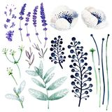 Gouache white and violet flowers. Hand-drawn clipart for art work and weddind design. royalty free illustration