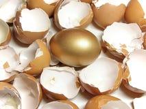 Goud en eierschaal stock afbeeldingen