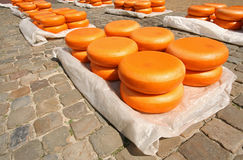 Gouda Cheese Stock Photography