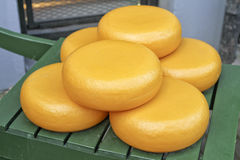 Gouda Cheeses Royalty Free Stock Images