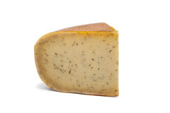 Gouda cumin spiced cheese Stock Image