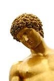 Gouden. Stock Afbeelding