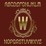 Gouden aanvankelijk monogrammalplaatje op elliptisch schild met kroon Mooie doopvont en embleemontwerpelementen royalty-vrije illustratie