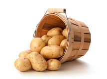 Gouden Aardappels Yukon in een Mand Royalty-vrije Stock Afbeelding