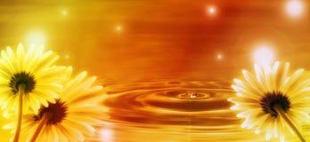 Gouden achtergrond met bloemen voor u ontwerp Stock Afbeelding