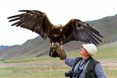 Gouden Adelaar met uitgespreide vleugels Stock Foto