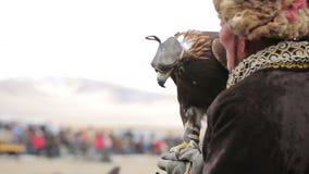 Gouden adelaar op de hand van de jager stock video
