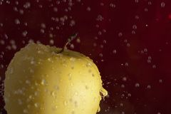 Gouden appel Stock Foto's