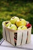 Gouden appelen in een fruitmand stock afbeelding