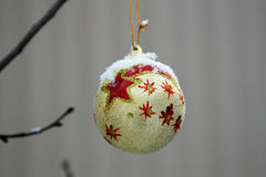 Gouden bal op een tak Stock Foto