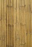 Gouden bamboe in Thailand Royalty-vrije Stock Fotografie