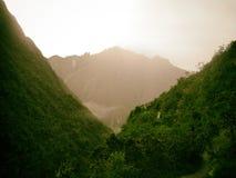 Gouden berg achter wilde wildernis Stock Foto's