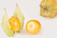 Gouden bes, uchuva - Physalis-peruviana Royalty-vrije Stock Foto's