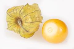 Gouden bes, uchuva Witte achtergrond - Physalis-peruviana Royalty-vrije Stock Foto