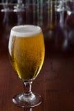 Gouden bier stock afbeeldingen