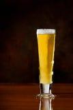 Gouden bier stock foto