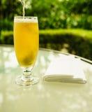 Gouden bier Royalty-vrije Stock Foto