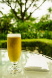 Gouden bier Royalty-vrije Stock Afbeelding