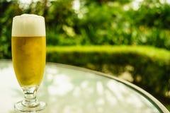Gouden bier Royalty-vrije Stock Fotografie