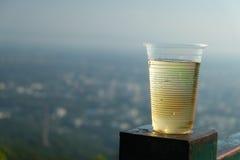 Gouden bier met in Plastic mok op een achtergrond van land Stock Foto