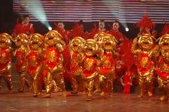 Gouden biggetje dans-2007 Jiangxi-het Feest van het de Lentefestival Stock Foto's