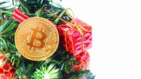 Gouden bitcoinmetaal op christamsboom royalty-vrije stock foto's