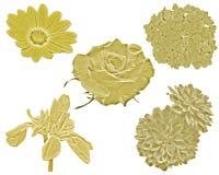 Gouden bloemen Stock Afbeelding