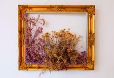 Gouden bloemendiekader met droge bloemen wordt verfraaid royalty-vrije stock afbeeldingen