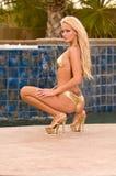 Gouden Blonde in Bikini Stock Afbeeldingen