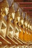 Gouden Boedha Royalty-vrije Stock Foto