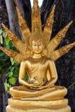 Gouden Boedha met nagas Royalty-vrije Stock Afbeelding