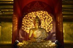 Gouden Boedha is vastgelegd in een Samadhi-glas houten boog stock afbeeldingen