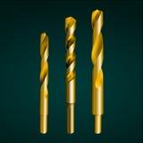 Gouden boorbeetje Royalty-vrije Stock Fotografie