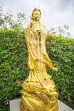 Gouden Chinees godsbeeld in tempel, Thailand Stock Foto