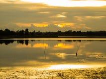 Gouden dageraad op de rivier stock afbeeldingen