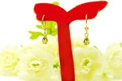Gouden de oorringsjuwelen van de tegenhangerkamee in geïsoleerde de vorm van de waterdaling Stock Afbeelding