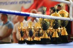 Gouden de trofeekop van de sportstapel in de ring royalty-vrije stock fotografie