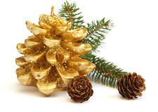 Gouden denneappel en tak van Kerstboom Stock Fotografie