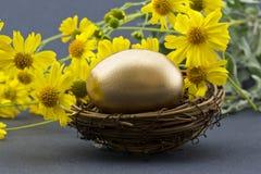 Gouden die ei in nest door de lentebloemen wordt omringd Royalty-vrije Stock Foto