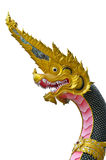 Gouden die Koning van Nagas op witte achtergrond wordt geïsoleerd royalty-vrije stock afbeelding