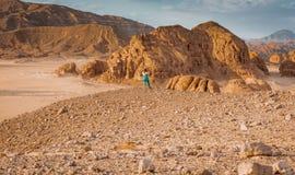 Gouden dor woestijnlandschap Sinai, Egypte royalty-vrije stock foto's