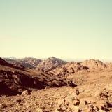 Gouden dor woestijnlandschap Sinai, Egypte stock afbeelding