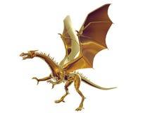 Gouden Draak Stock Afbeelding