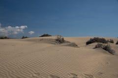 Gouden duinen, zand, stock foto