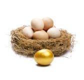 Gouden ei. Stock Afbeeldingen