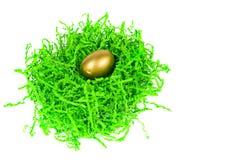 Gouden ei dat in groen decoratief gras wordt genesteld Stock Foto